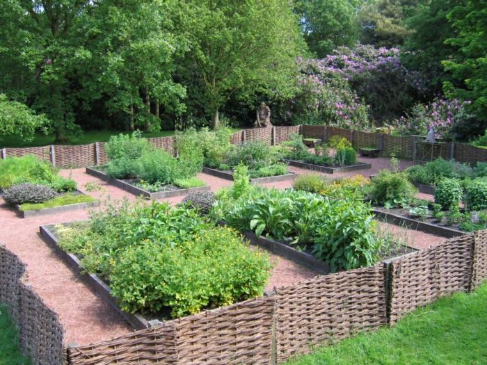 jardin herbes fleurs