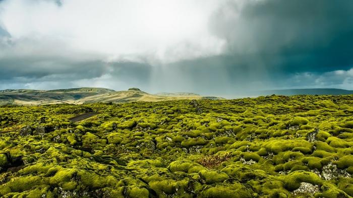paysage voyager en Islande