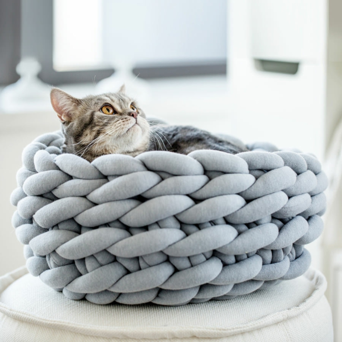 arm knitting panier pour chat
