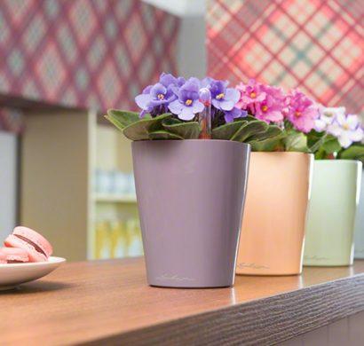 Diy Id Es Comment Personnaliser Les Pots De Fleurs