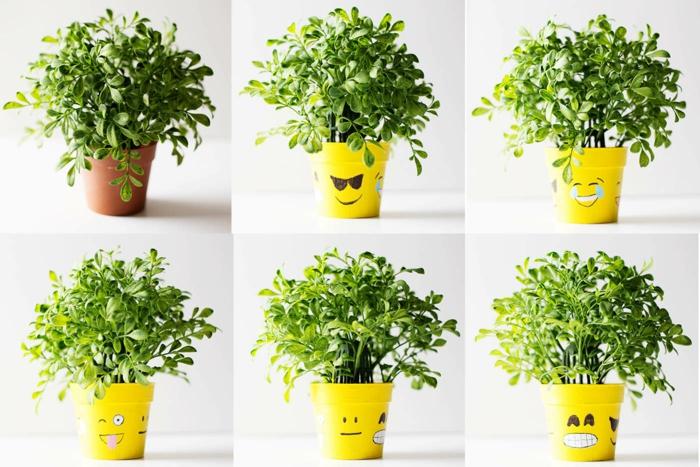 diy emoji pots de fleurs