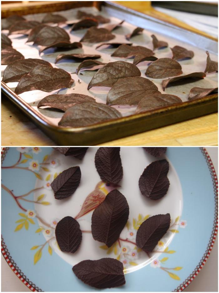 feuilles en chocolat pour gâteau feuille d'automne