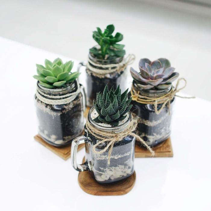 diy cadeau no l id es originales avec des plantes. Black Bedroom Furniture Sets. Home Design Ideas