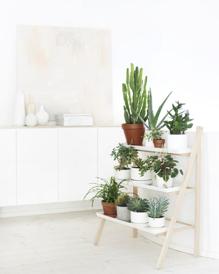 plantes vertes pour une ambiance lagom