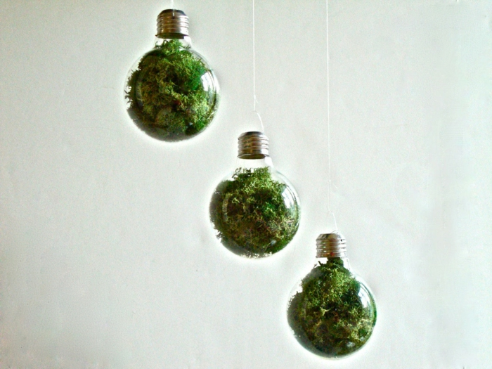 terrarium ampoule diy cadeau noël