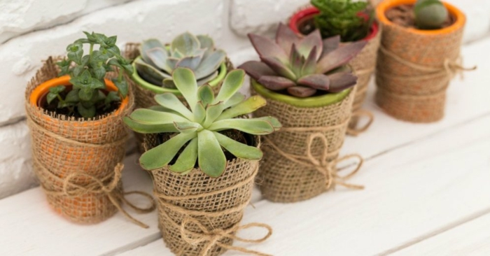 transformer les vieux pots de fleurs