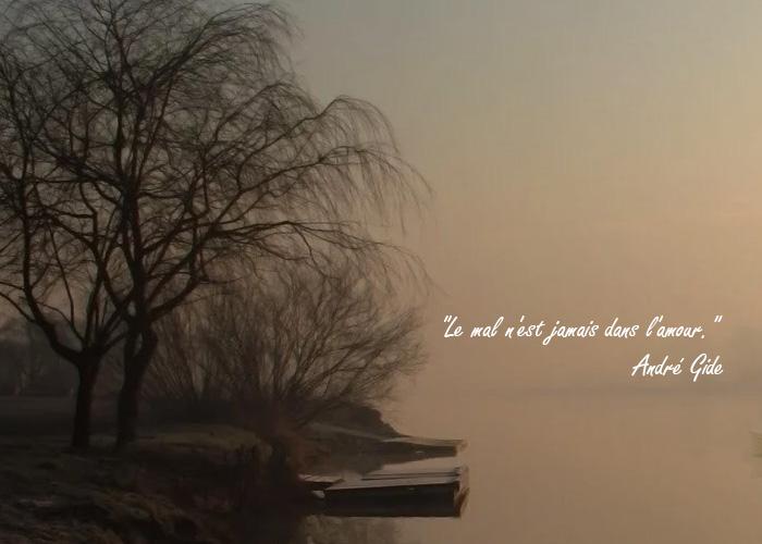 citations d'amour le mal n'est jamais dans l'amour
