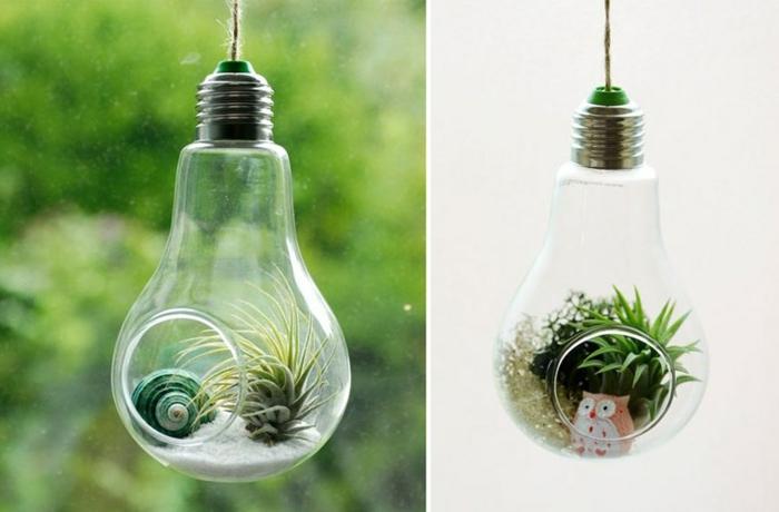 ampoules électriques recyclées en terrariums