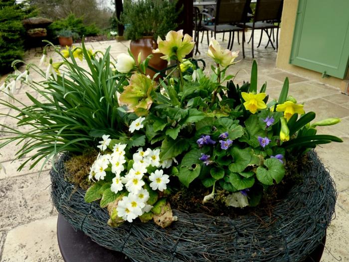 créer une jardinière d'hiver