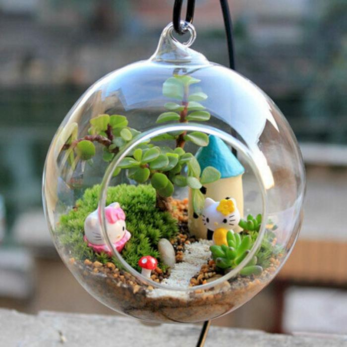 déco intérieure terrarium plantes grasses