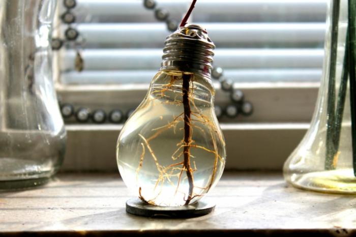 déco plantes ampoules électriques