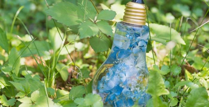 diy déco motifs nature ampoules électriques