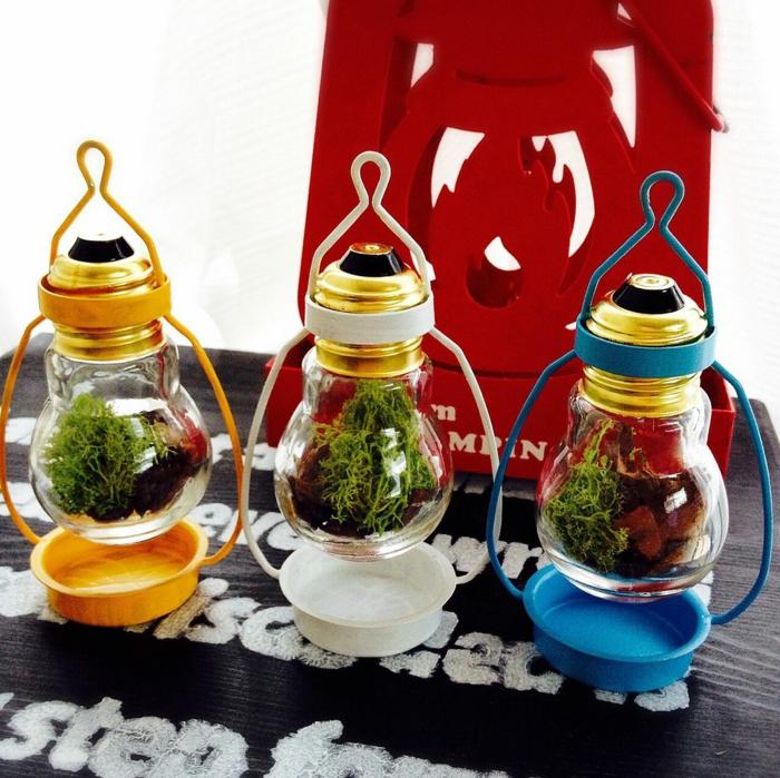 diy lanternes terrariums ampoules électriques