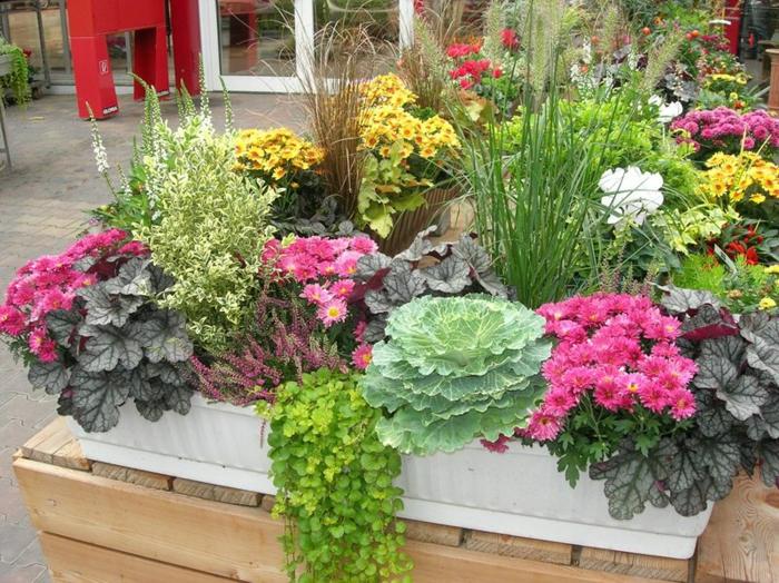 faire une jardinière d'hiver