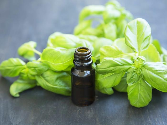 huile essentielle de basilic pour dormir bien