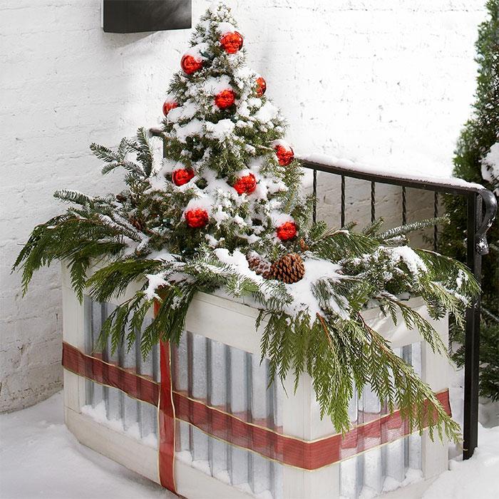 idée noël jardinière d'hiver