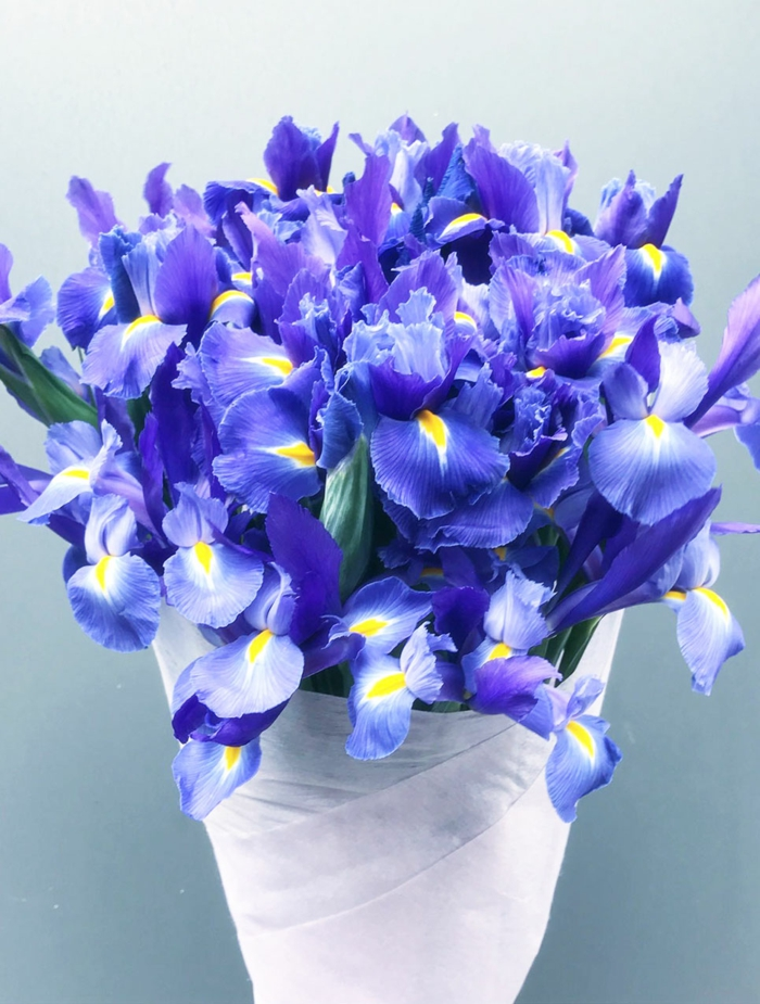 le langage des fleurs bouquet d'iris