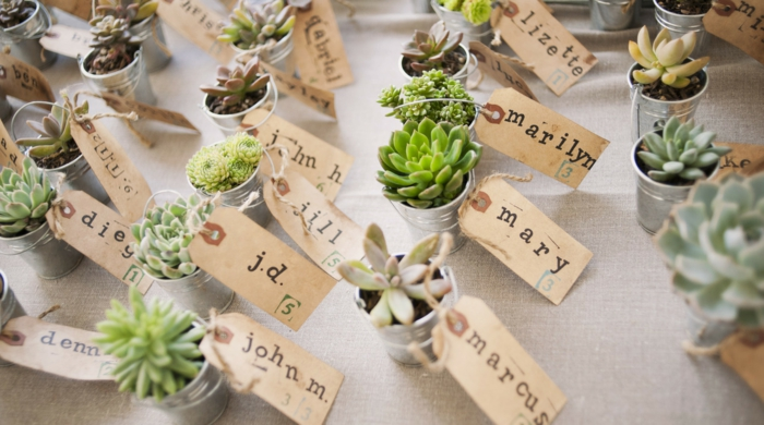 plantes cadeau invités mariage