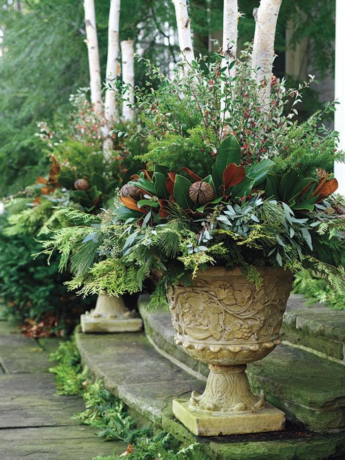 plantes différentes jardinière d'hiver