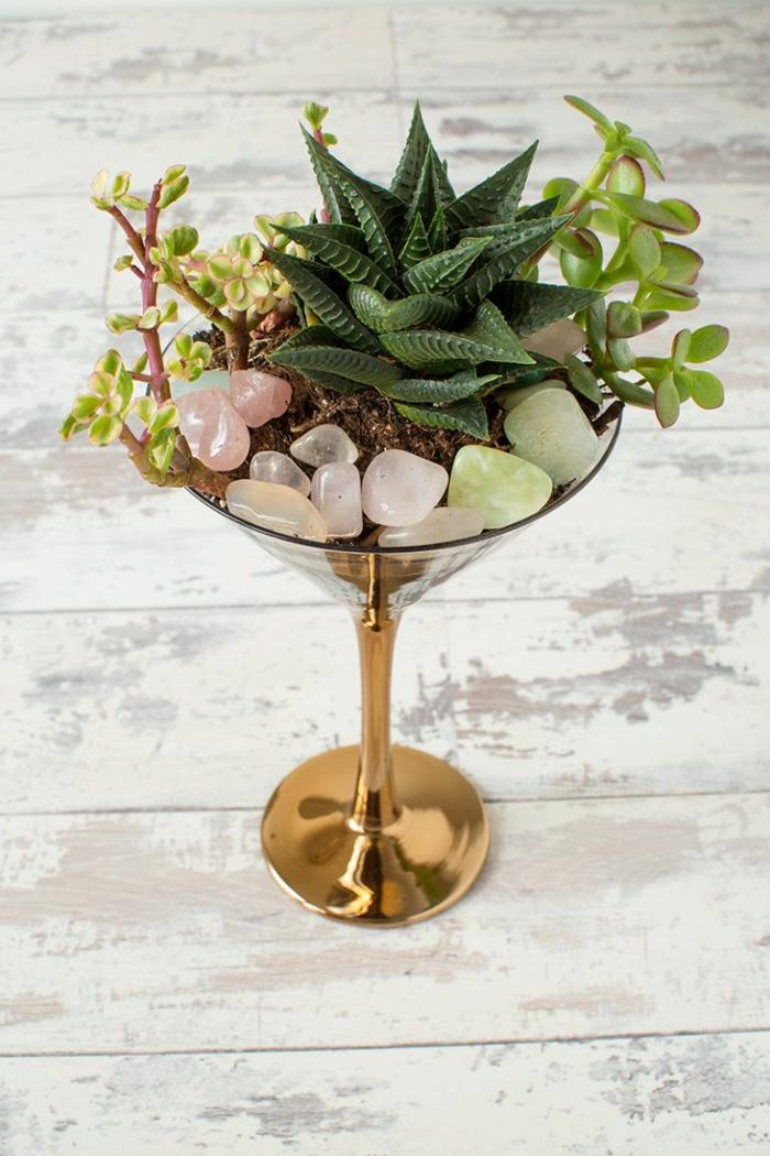 terrarium plantes grasses cristals de roche
