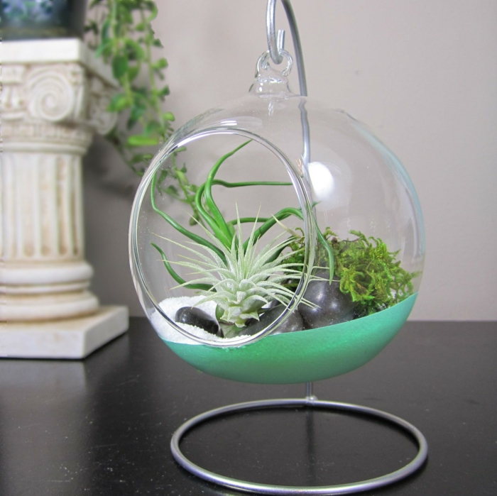terrarium plantes grasses 40 superbes id es en photos. Black Bedroom Furniture Sets. Home Design Ideas