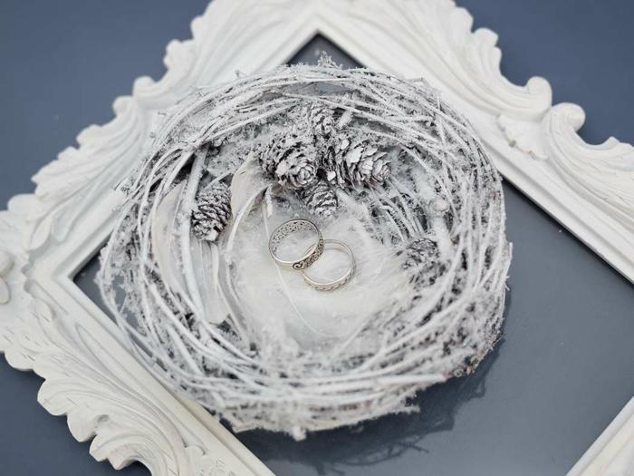 boite alliance nid en hiver