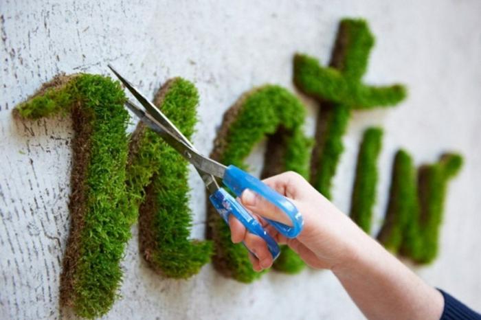 déco murle avec graffiti de la mousse végétale