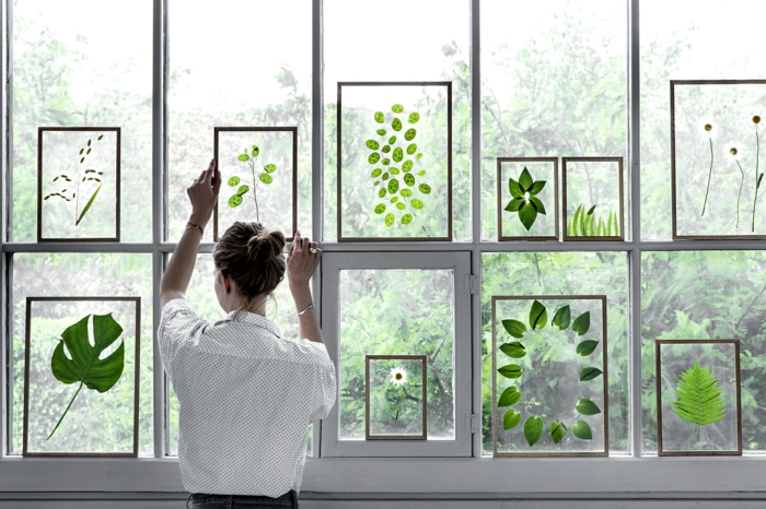 diy projet comment faire un herbier