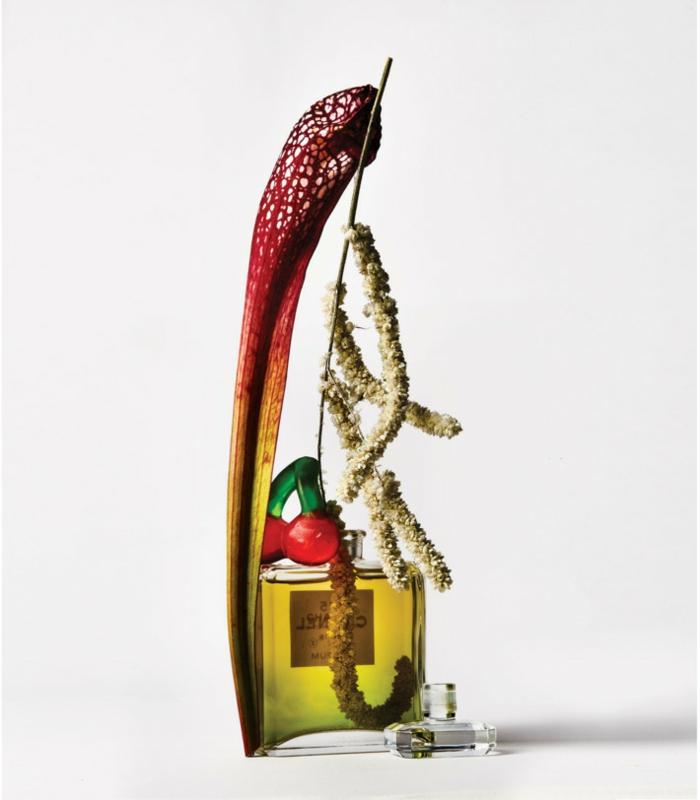 freakebana décoration tendance eau de parfum fleurs