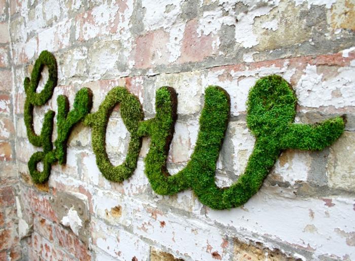 mousse végétale graffiti