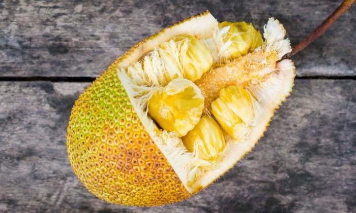 fruit du jacquier calories
