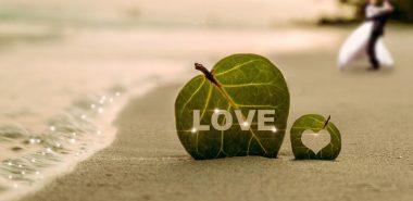 Texte Félicitation Mariage Comment être Sincère Sans être