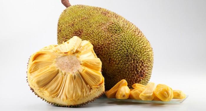 le fruit du jacquier jackfruit