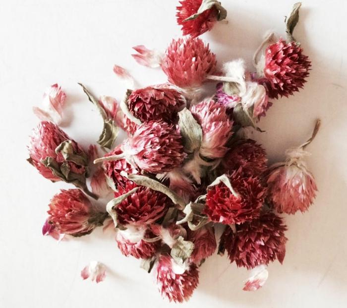 comment faire vous-même des fleurs séchées