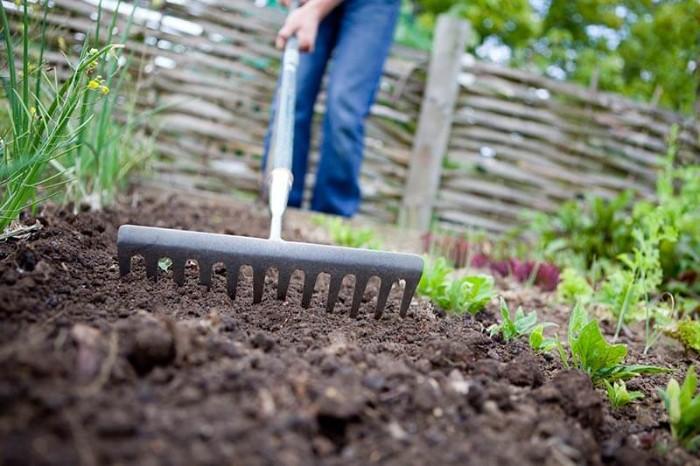 comment s'entraîner avec des outils jardinage