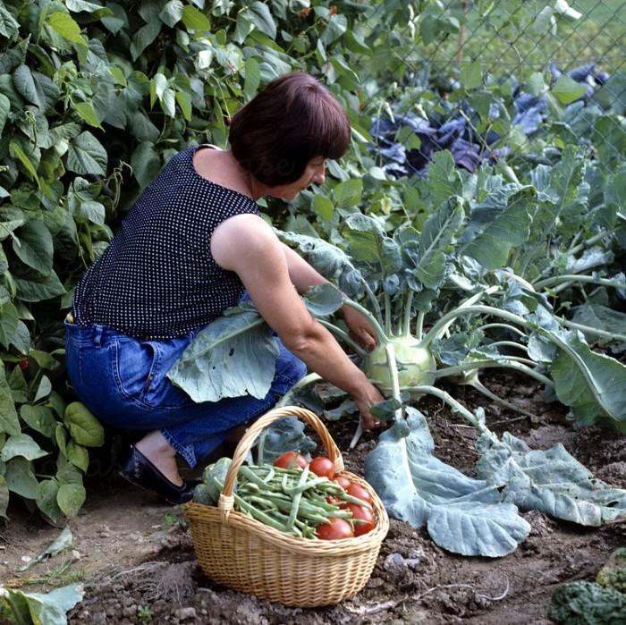 entraîner vos muscles avec des outils jardinage