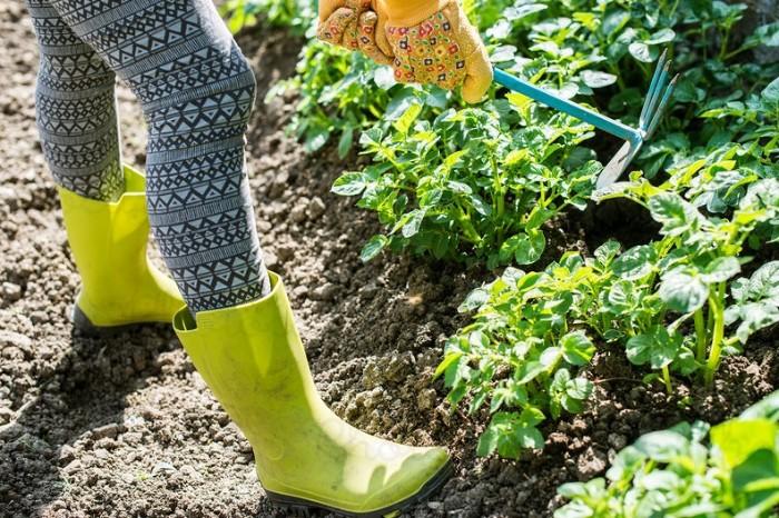 entraîner vos pieds avec des outils jardinage
