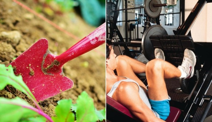 entraîner votre hanche avec des outils jardinage