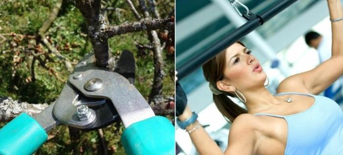 entraîner votre poitrine avec des outils jardinage