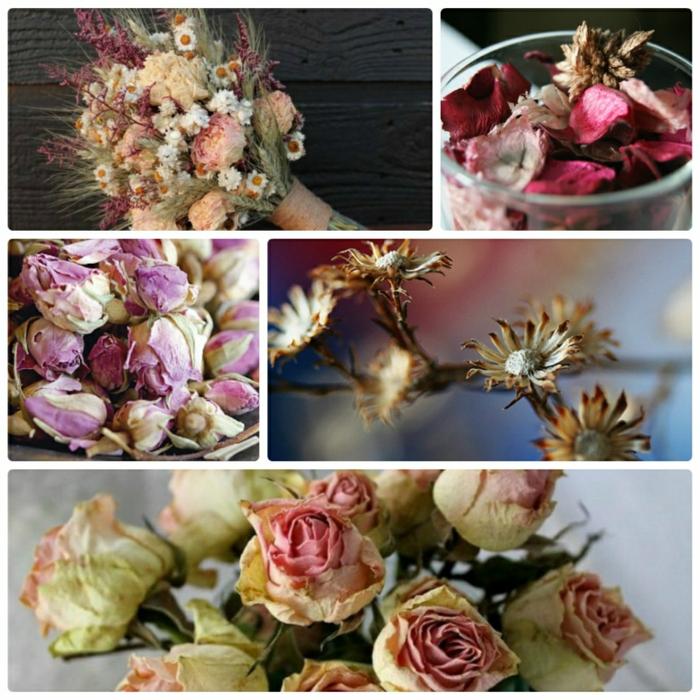 fleurs séchées - décoration originale et facile à faire