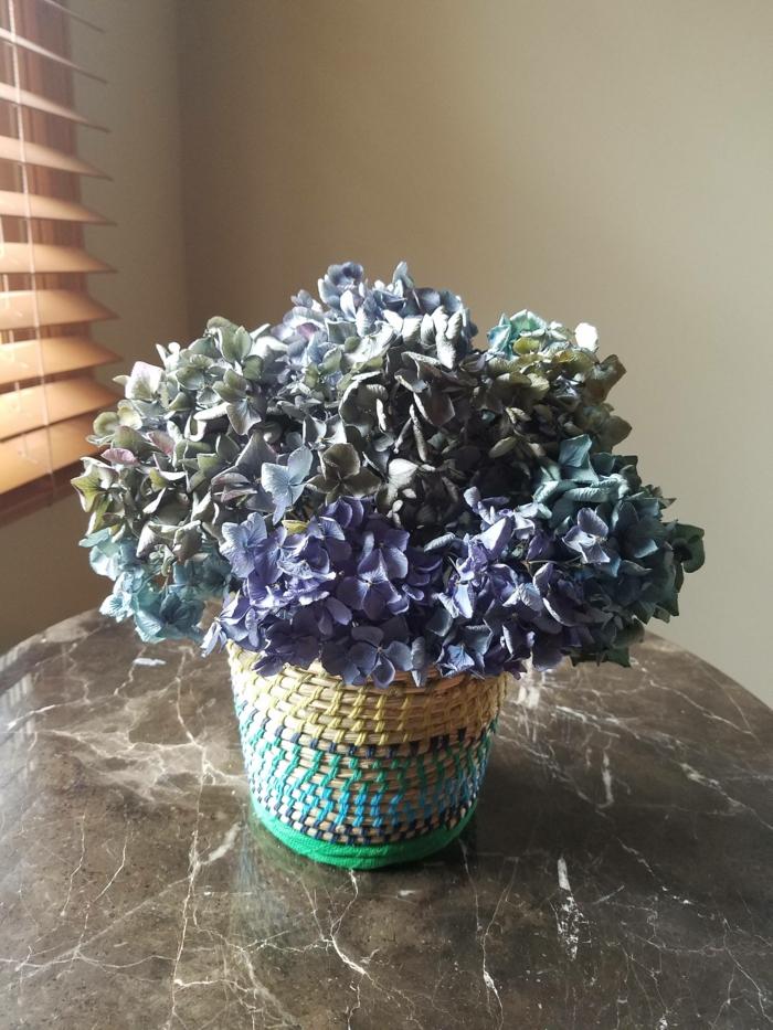 fleurs séchées hortensia