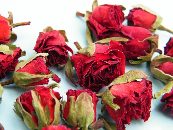 fleurs séchées idée déco avec des roses