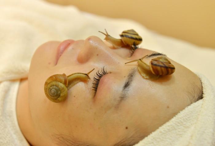 gommage visage fait maison escargots