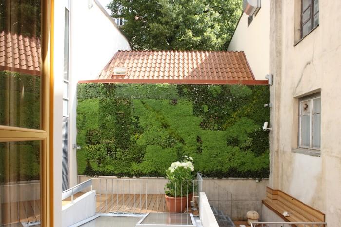 idée de brise-vue mur végétal