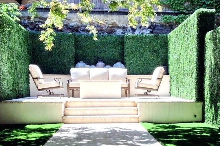 idée de brise-vue pation murs végétaux