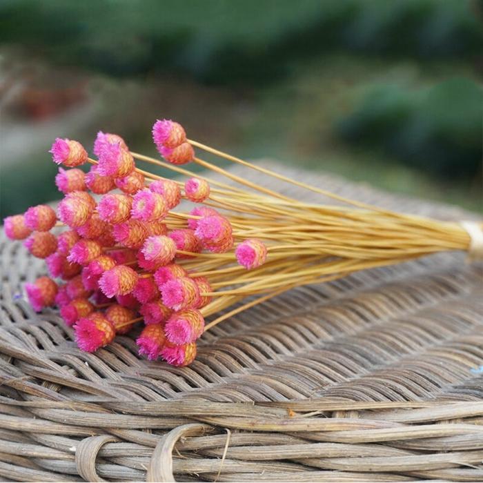joli bouquet de fleurs séchées roses