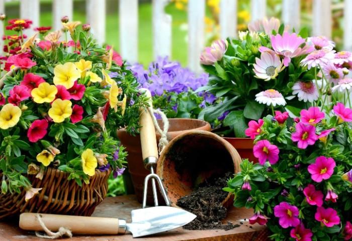 utiliser les outils jardinage pour vous entraîner
