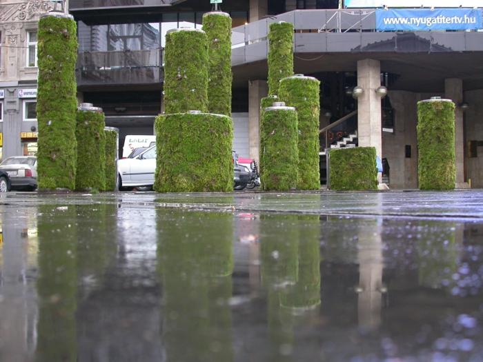 budapest street art mousse végétale
