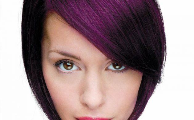 cheveux prune foncé