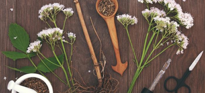 comment utiliser les racines de la valériane